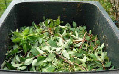 Comment protéger les ramasseurs de déchets ?