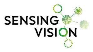 Sensing Vision